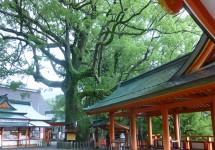 熊野那智大社、那智の滝、那智、和歌山
