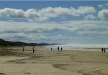 クーラムビーチ、サンシャインコースト、ヌーサ、ブリスベン、オーストラリア