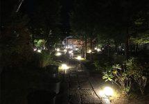 勝林寺、東福寺、紅葉、ライトアップ
