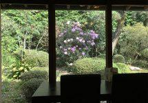 kyoto,京都、大原三千院、ご飯