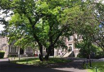 ダニーデン,オタゴ大学,ニュージランド