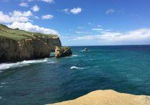 ニュージーランド旅行、ダニーデン、トンネルビーチ