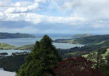 ニュージーランド旅行、ダニーデン、オタゴ半島、ラーナック城