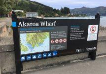 ニュージーランド、クライストチャーチ、アカロア