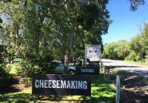 ニュージーランド、アカロア、チーズ工場、nz,、クライストチャーチ