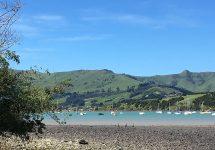 ニュージーランド、アカロア、ワイナリー、nz,、クライストチャーチ